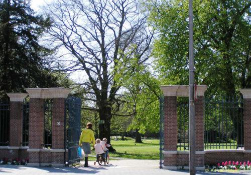 ad van halem - lente in park eekhout
